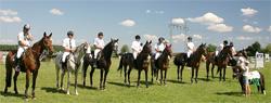 Bautzner Pferdefreunden dürstet es nach Sonne - Pferdesport Bautzen e.V. freut sich auf viele Besucher und hofft auf Sonnenschein