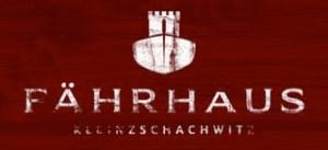Fährhaus-Kleinzschachwitz-Biergarten wird zur großen Fußballwiese Bis 24 Uhr werden live alle Fußball-WM-Spiele übertragen