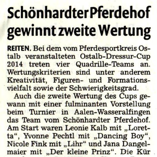 10 - Remszeitung vom 04. Juni 2014