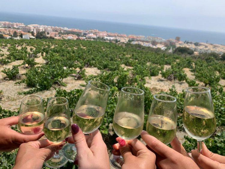 Nilva wine from Manilva - Image: Tripadvisor