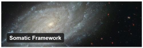 Somatic Framework