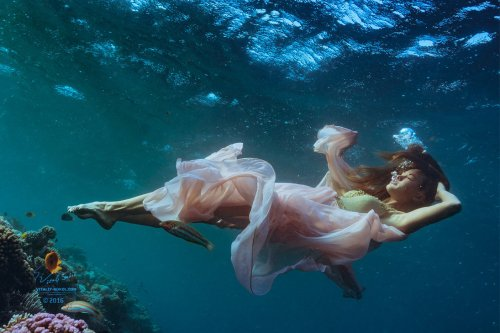 Underwater Dream