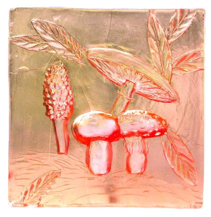 Mushrooms under glass - Jim Wasik