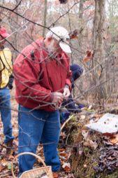Jim Wasik picking Hypholoma sublateritium (brick top)