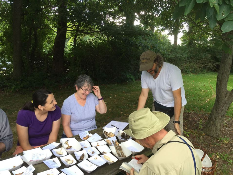 Sharing a joke while identifying the finds.