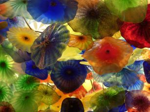 psychedelic mushrooms chihuly glass, J.Stuart