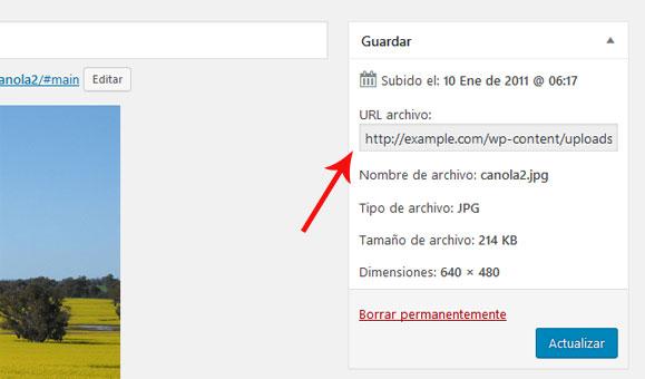 Obtener la URL del enlace de imagen en WordPress