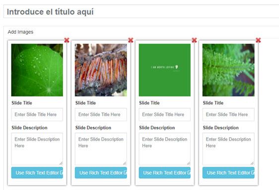 Plugin Ultimate Responsive Image Slider para crear una diapositiva en WordPress