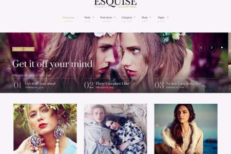 theme-wordpress-esquise