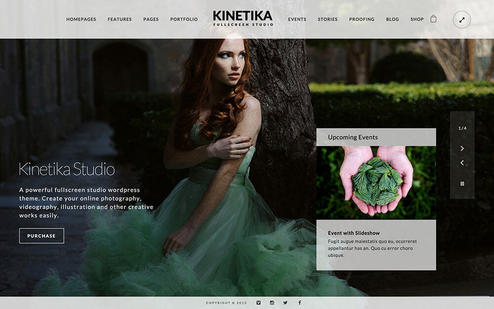theme-wordpress-kinetika