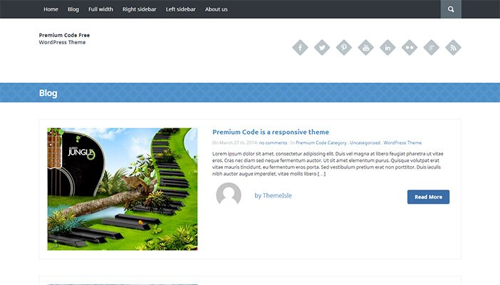 Premium Code Lite WordPress Theme