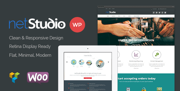 Netstudio WordPress Theme