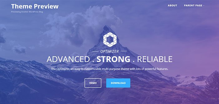 Optimizer - Best Minimal WordPress Theme