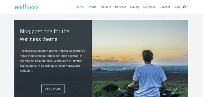Wellness - Health & Wellness WordPress Theme