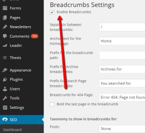 Best Free   Premium Thesis Skins For WordPress