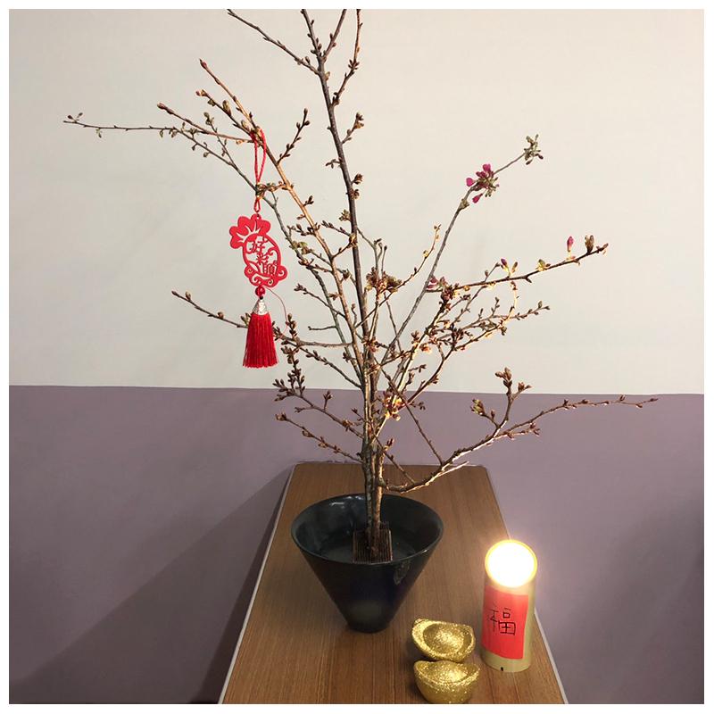 小金燈_情境圖_新年節慶氣紛