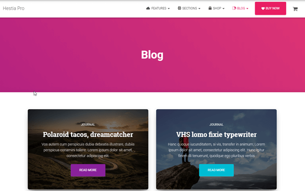 Best WordPress Themes for Bloggers You Should Know [2019] 3