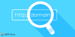 Change Domain Nameserver