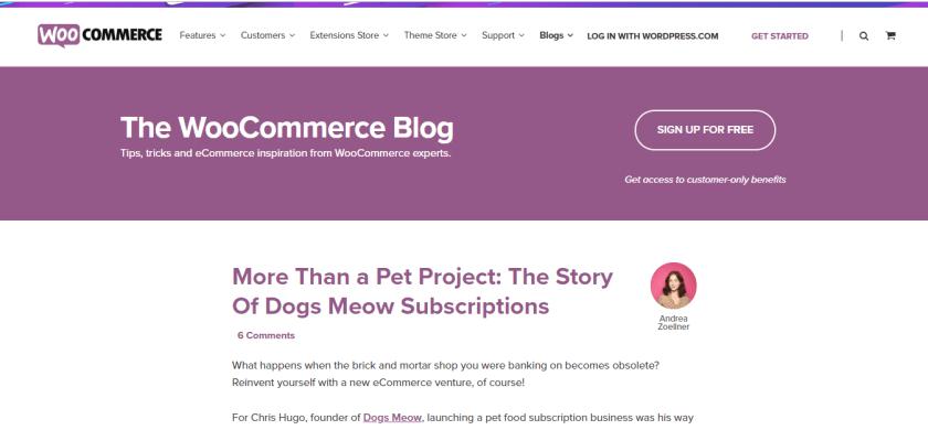 woocommerce- best wordpress blogs