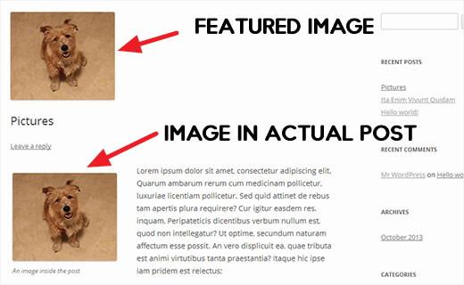 fix duplicate featured image