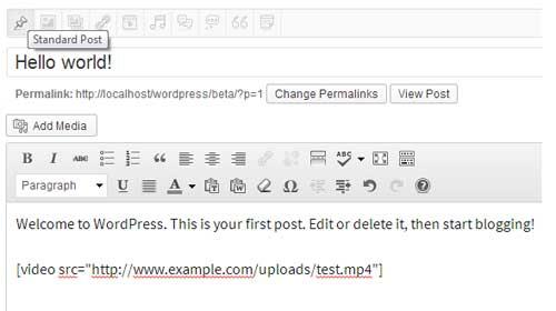 embedding video into wordpress post editor