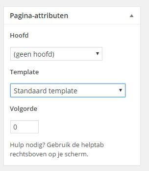 Pagina template wordpress