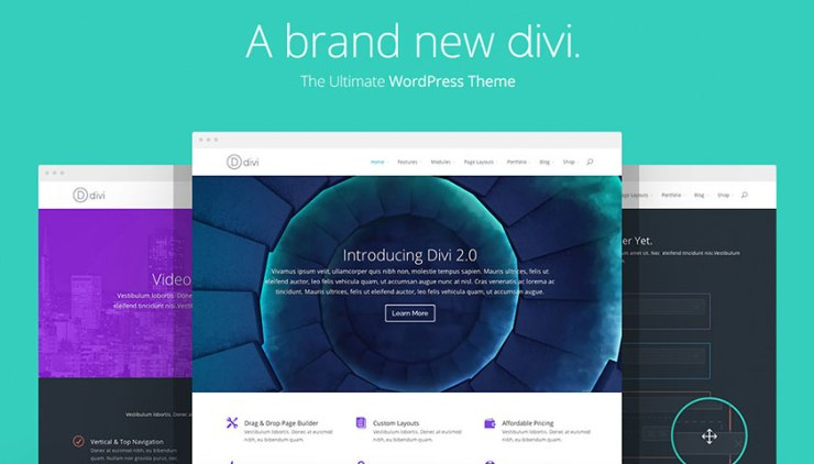 Divi WordPress Theme for Adsense