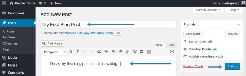First Blog Post on New Blog WordPress