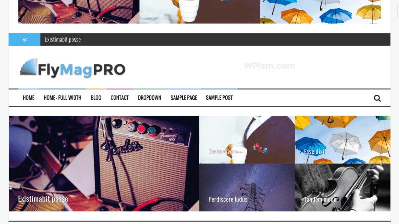 FlyMag Pro Adsense Optimised WordPress Theme ThemeIsle