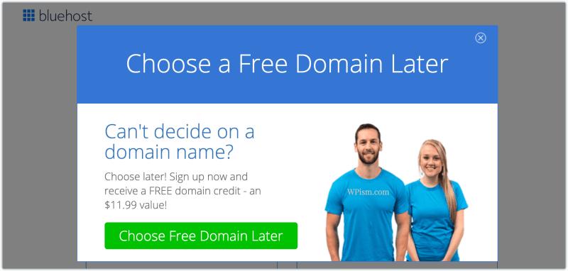 Free Domain Bluehost Choose Later Credit Coupon