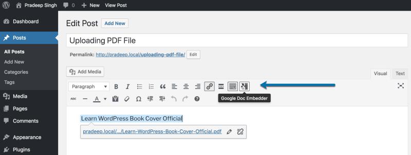 Google Doc Embedder Plugin sortcode Button