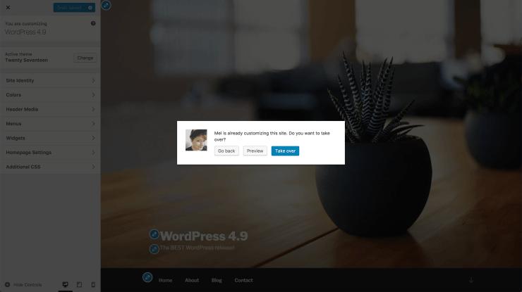 customizer lock changes WordPress