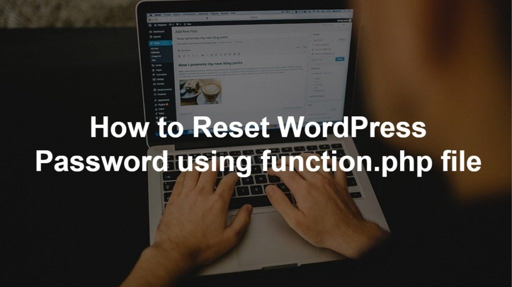 How to Reset WordPress Password using Function file