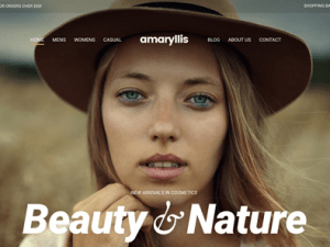 CSS Igniter Amaryllis WordPress Theme