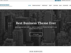 CSS Igniter Business3ree WordPress Theme