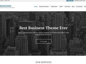 CSS Igniter Business3ree WordPress Theme