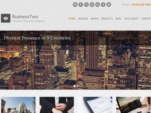 CSS Igniter BusinessTwo WordPress Theme