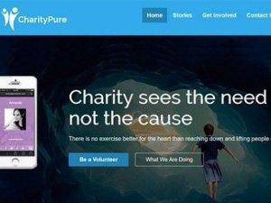 CyberChimps CharityPure WordPress Theme