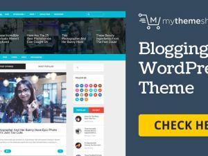 WPLocker-MyThemeShop BloggingBox WordPress Theme