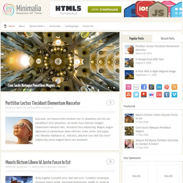 WPLocker-MyThemeShop Minimalia WordPress Theme