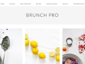 StudioPress Brunch Pro Theme