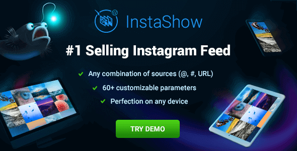 Instashow - Instagram Feed For WordPress