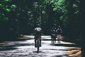 People riding bikes on a forest road.