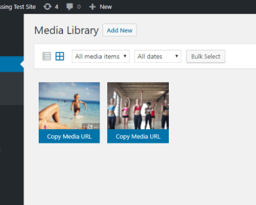 Copy Media URL In Media Library