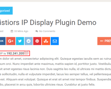 Display Vistor's Real Public IP On The Page-min