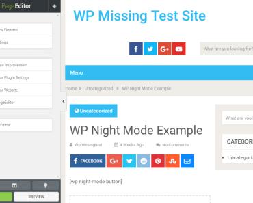 Visual WordPress Page Content Editor - PageEditor Options-min