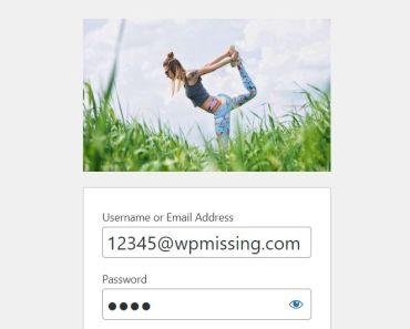 A WordPress Plugin To Change Site Logo On Login Page