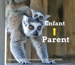 enfant-parent
