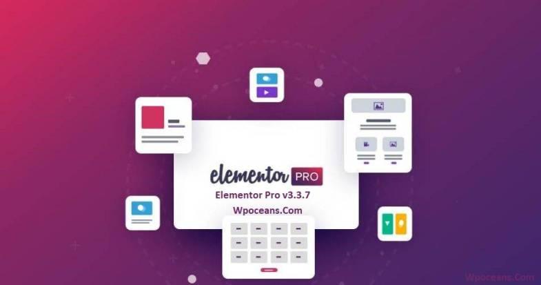Elementor Pro v3.3.7
