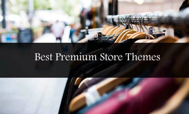 best premium wordpress store themes